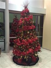 クリスマスツリーを飾りました。
