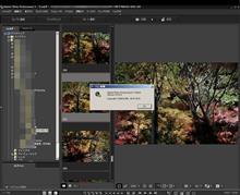 Digital Photo Professional 4.3.31 (J)