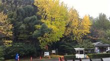 晩秋の横浜・・