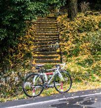 今朝のサイクリングーー今月の〆。