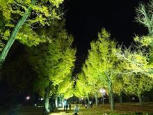 秋の天草満喫ツアー~その1