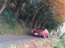 紅葉 b110