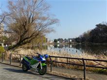 石神井公園お散歩
