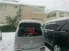 大雪になってるー!