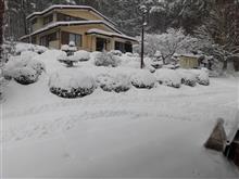 今年の初雪で大雪です。