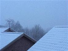 """今期初めての本格的な雪の日に""""失明の危機"""""""