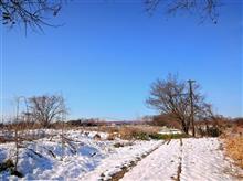 西武・安比奈線跡の雪原を行く 全線写真版