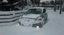 お久し振りの大雪