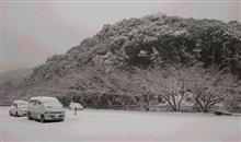 v( ̄Д ̄)v{雪遊び~www