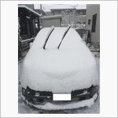雪・・・・・・ ⛄ ⛄ ⛄