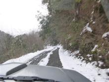 この前の雪林道で・・・