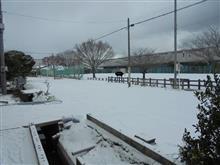 先週は大寒波でした!