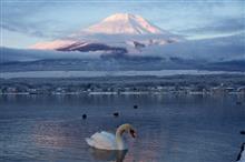 富士山 北富士演習場 雪遊び