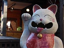 奈良まちブラブラ……👫