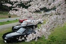 春を感じに渥美半島ツーリング!