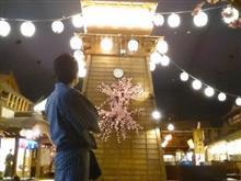 ぶらり♪お台場と木場公園の河津桜