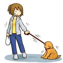 犬の散歩が苦痛なだと思う方に必見!