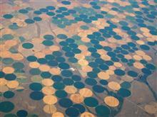 地表に見える幾何学模様