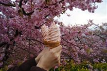 花よりアイス(曽我梅林、まつださくら祭り)