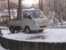 また雪が降りましたが、、、、