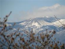 【吾妻山】 今年も雪うさぎが