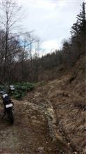 セローで初林道