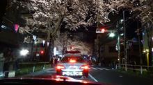 古舘伊知郎の地元桜ライトアップ