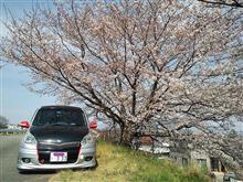 花は桜木 男は岩鬼…