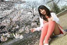 桜の季節到来!エキサイトお花見・・・