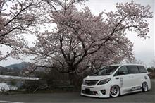 桜とコラボ(¬_¬)