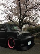 桜の下で記念撮影