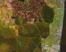 エバーグレーズの排水と開発