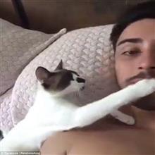 カワイイ猫がオッサンにチュウをせがむという、けしからん動画が話題に