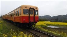 小湊鉄道と菜の花とELISE