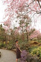 京都 嵐山と近況報告