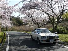 今年の桜・・・ ☆祝アクセスカウンター170000ヒット☆