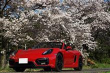 桜+晴天~洗車