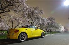 kenさんと夜桜撮影オフ