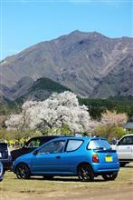 南阿蘇 一心行の大桜