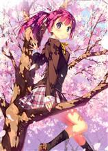 桜を見におじさんぽ