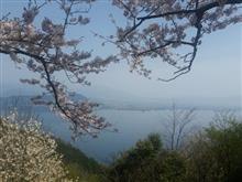 奥琵琶湖パークウェイとマキノ高原メタセコイア並木