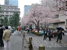2016/4/3 日本銀行前庭にて
