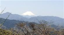 高尾山へ行って来ました。