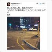 熊本地震・・・2