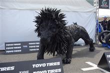 モータースポーツジャパンフェスティバル2016