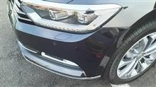 黒パサヴァリ まじめに洗車