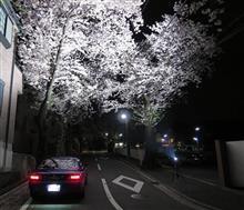 """「桜」を""""まとめ""""に まとめました。"""