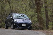 軽井沢 野鳥の森へ遠征でした!(4月24日)