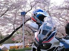 理想のビッグオフロード系旅バイク (アフリカツイン)