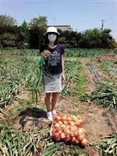 年に1度の農作業